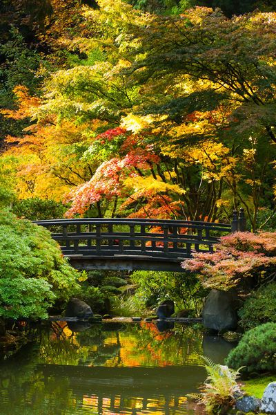 'Moon Bridge in Japanese Garden' by Chris Bidleman