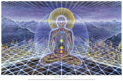 """This is Alex Grey, currently my favorite artist. Most of his work appears in magazines and album cover including beastie boys """"ill communication"""" which used his 'Gaia' image and 'Lateralus' album by tool. I resently found he illustrated Nirvanas 'in Utero aswell."""