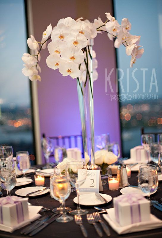 Best phalaenopsis orchids arrangements images on