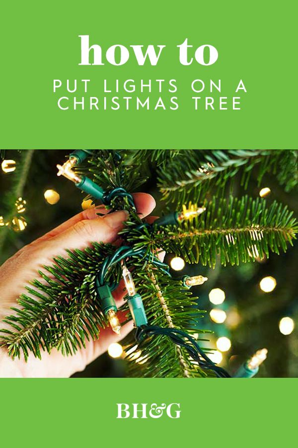 Everything You Need To Know About Perfectly Lighting Your Christmas Tree Christmas Tree Decorating Tips Christmas Tree Lighting Christmas Tree Tumblr