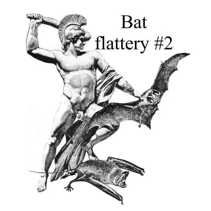Bat flattery #2.