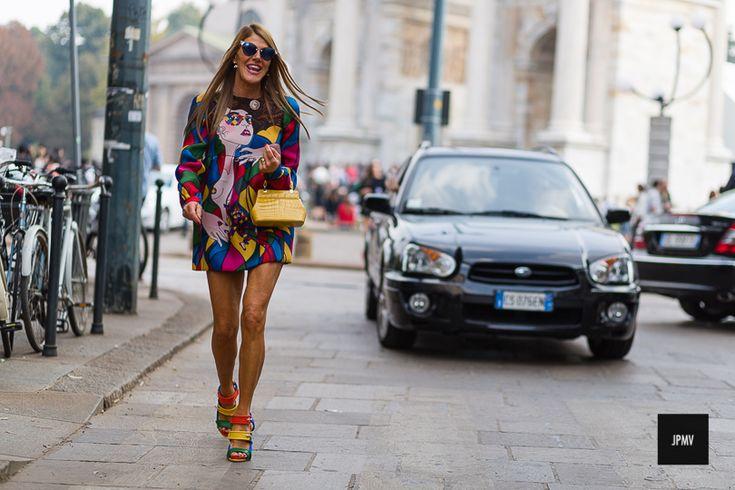 Couture colletctor Anna dello Russo Embassadorsof high fashion