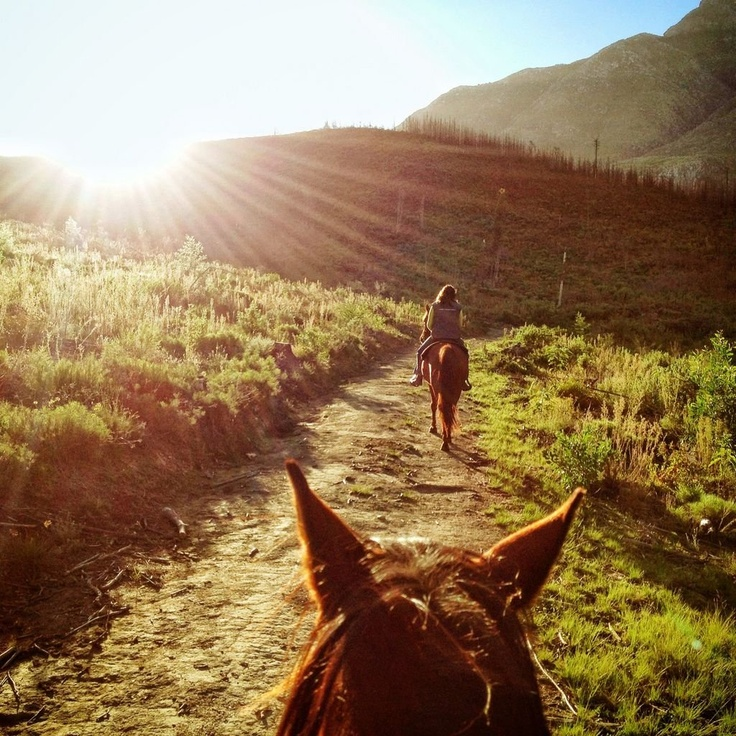 Horseback Riding in Swellendam, South Africa. #MeetSouthAfrica >>> Yup, it's DEFINITELY going on the bucket list! Looks gorgeous!