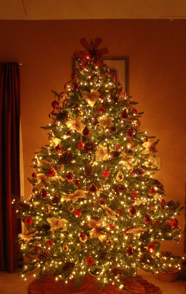 142 Best Christmas Trees Images On Pinterest  Xmas Trees, Christmas Ideas  And Christmas Time