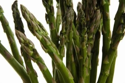 When to Plant Asparagus in Florida thumbnail