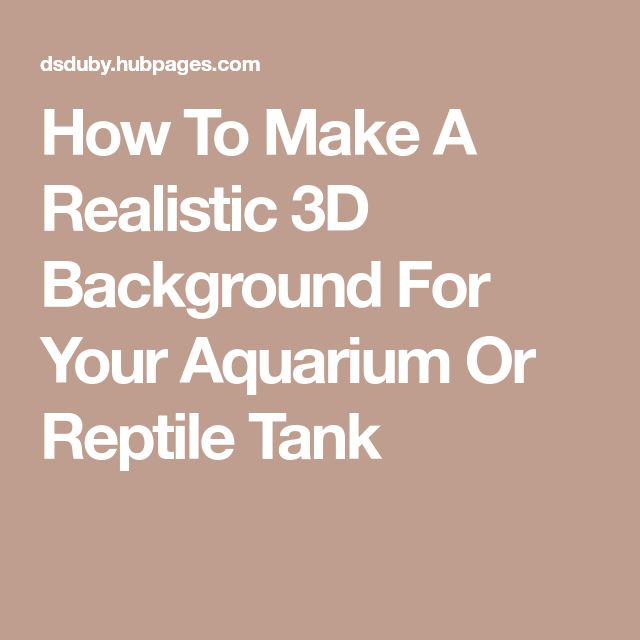How To Make A Realistic 3D Background For Your Aquarium Or Reptile Tank