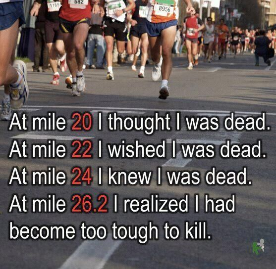 Hope this can still apply to the 13.1...no desire for a 26.2...at this point at least.