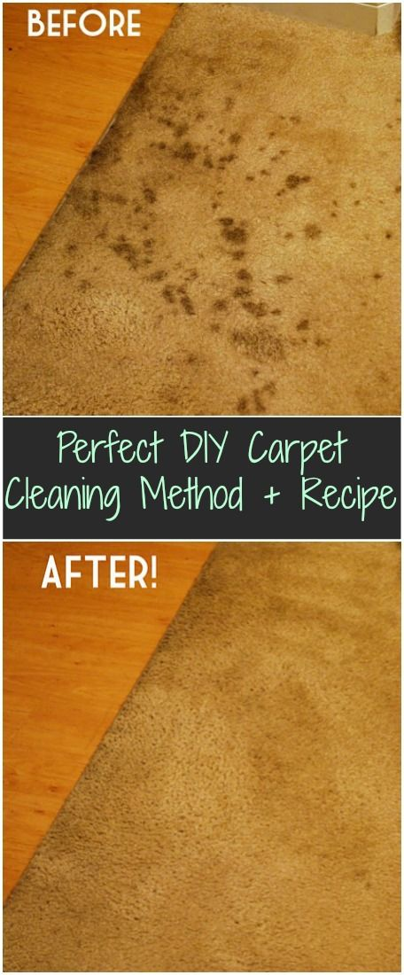 Homemade carpet cleaner recipe!