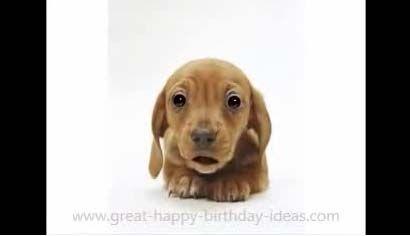 I got this lovely Birthday card from my friends, Raj & Ellen.  I Love it!!!
