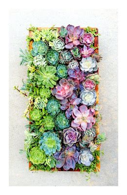 amazing living wall via #etsy