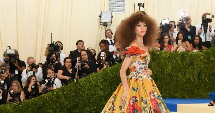 Zendaya brings whimsy to the Met red carpet with parrot prints and a voluminous Afro.