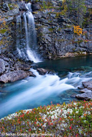 Autumn waterfall - Serkan Günes - Wildlife Photographer of the Year 2006 : Eric Hosking Portfolio Award - Winner