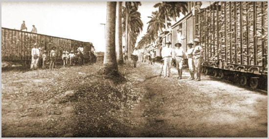 "1890. The first distillery was built at the San Antonio Sugar Mill in Chichigalpa, Nicaragua in 1890. Back then the young rums were the drink of choice for celebrating the the sugar cane harvest, with limited quantities of better tasting ""aged"" rums reserved for and savored by the proprietors of the mill. Founded by Francisco Alfredo Pellas the company is led today by the Pellas family's fifth generation."