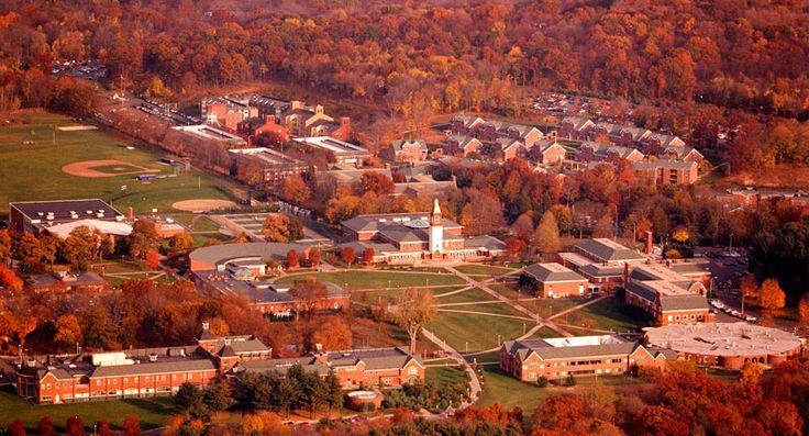 Quinnipiac University.. My kids second home