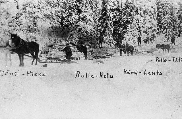Uusikaupunkilaisen Sundholmin talon miehet ja hevoset (Jänsi, Pilkku, Rulle, Retu, Kömi, Lento, Pello ja Täti) vetävät tukkirekiä 1940-50-luvulta peräisin olevassa postikorttikuvassa. Turun Museokeskus