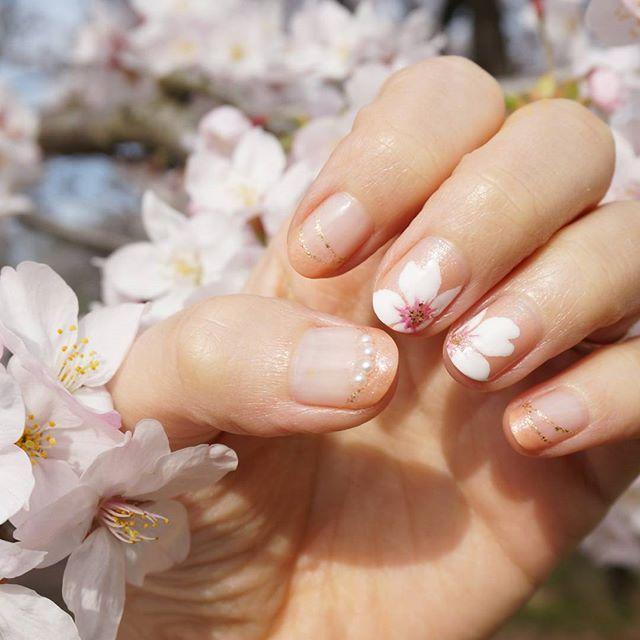 💅 #桜ネイル 本番編!w 前回postの練習を踏まえて、 花はより白くしました。 でも実は真っ白ではなくて、ほんの少~~~し #リキュールネイル(ベリー)を混ぜてます。 言われて見ても分からない自己満ぶり😂笑 桜はドットペンで手描きです。プルプルでしたww お花見したので本物の桜とコラボ💓 …… 💅使用ポリ #NAILHOLIC(WT005) #CANMAKE(31シナモンパール) #TMリキュールネイル(ベリー) ちふれ(細筆タイプ006) …… #nailholic_kose #ネイルホリック #キャンメイク #キャンドゥネイル #花ネイル #フラワーネイル #flowernails #フレンチネイル #手描きネイル #nail #nailpolish #selfnail #네일 #매니큐어 #네일아트 #ネイル #ネイルアート #ショートネイル #マニキュア #ポリッシュ #セルフネイル #セルフネイル部 #セルフネイル部桜ネイル @selfnail.club 桜ネイルコンテストに参加させて頂きます🌸 #ayaco_nail