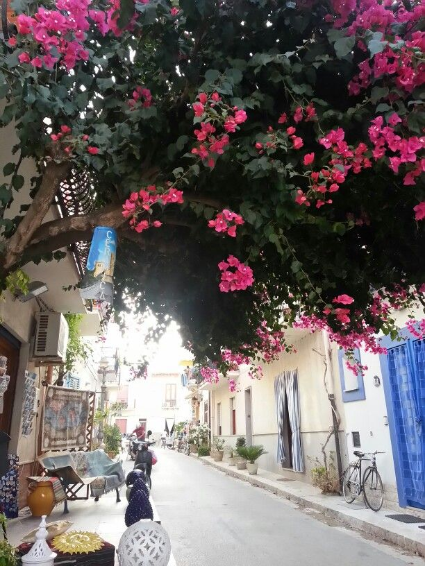 Color of nature in the streets...bouganville !