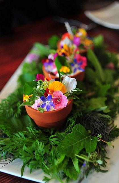 Het lente bloemen potje: lavendel, custard, bij pollen kruimels, rabarber en eetbare bloemen.
