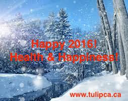 Tulip Canada: A Year Filled with Wonder & Adventure!