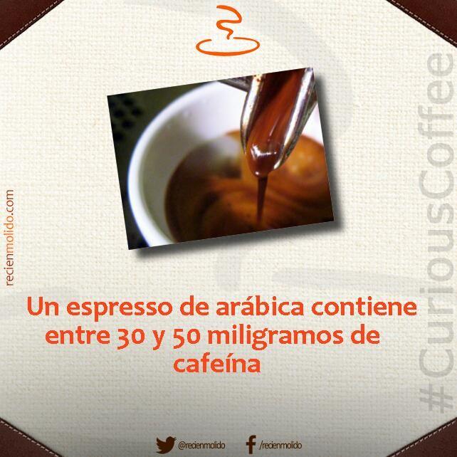 #CuriousCoffee ¿#SabíasQue la especie arábica de #café contiene menos #cafeína que la robusta?