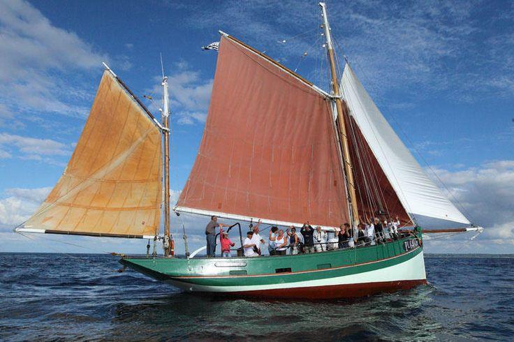 Sortie en voilier vers les Sept Iles | à bord d'un vieux gréement au large de Perros Guirec