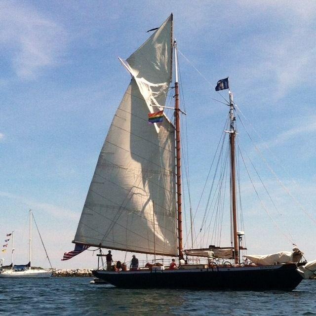 395 Best Cape Cod Activities Events Images On Pinterest