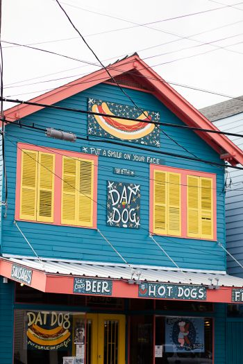 Dat Dog   Sarah Becker Photography   Entouriste   A Local's Guide to New Orleans