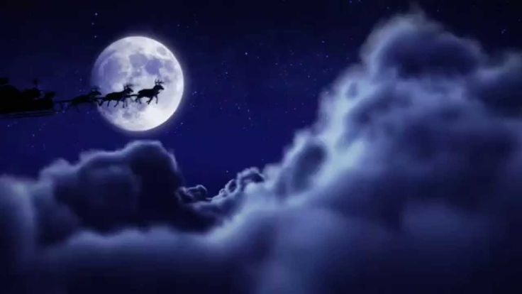 Filmato da Babbo Natale (2014) www.elfisanta.it