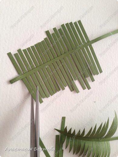 Paper fern tutorial by Anastazia Bertova!