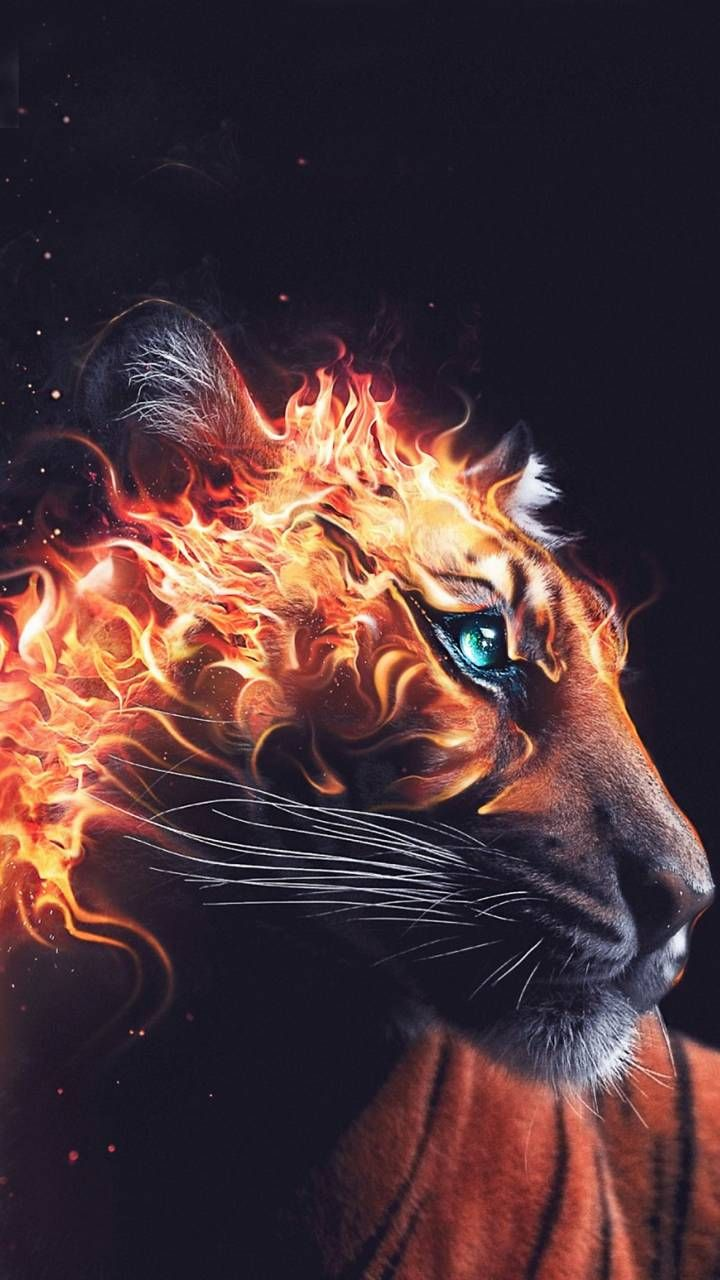 burning tiger head