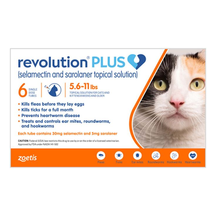 Revolution Plus Topical Solution 5 6 11lbs Cat Pack Of 6 In 2020 American Dog Topical Petco