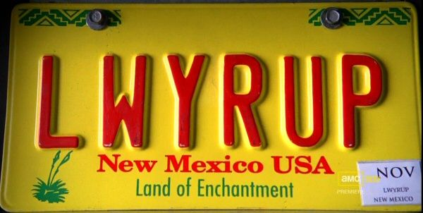 lwyrup license plate -Shister Saul Goodman's plate
