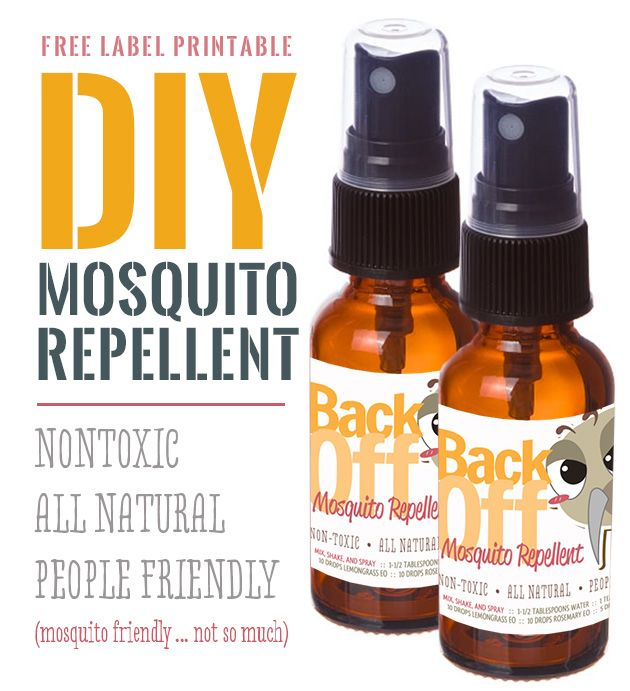Make Your Own Mosquito Repellent Spray - Lexie's Kitchen | Gluten-Free Dairy-Free Egg-Free -