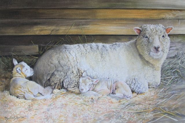 """Morning Nap"" Pastel 36""x24"""
