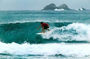Si hay una cosa que no falta en Australia son playas y surf.  Anotar una lista de las mejores playas es muy difícil ya que los 30.000 kilómetros de costa da