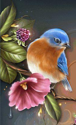 Little sweet blue bird....