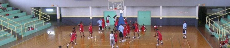 Brian McCormick Basketball - The Science behind Basketball Coaching & Player Development