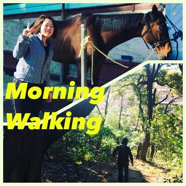 【sorriso_n7】さんのInstagramをピンしています。 《朝からミオさんと1時間のウォーキング🎁💕 目白に馬🐎がいる驚き🙄🙄🙄! ウォーキング習慣も今日で26日目🚶♀️✨夏まで頑張るぞー💪😤😤😤 #ご近所さん #散策 #朝活 #天気いい #春一番 #馬 #森 #市街地 #笑顔 #楽しい #内蔵脂肪1減った #sorriso》