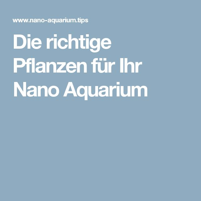 best 25 nano aquarium ideas on pinterest freshwater. Black Bedroom Furniture Sets. Home Design Ideas