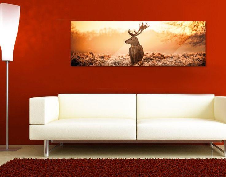 Glasbild Prachtvoller Hirsch