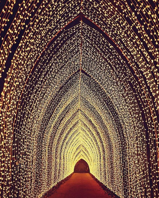 The Cathedral Of Light Is The Largest Tunnel Of Lights Ever Assembled At Kew Gardens Cool Places To Visit Kew Gardens London Kew Gardens