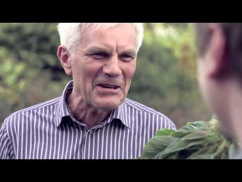 Co to jest amarantus? Do czego służy popping? Czy można upiec babeczkę bez drożdży? Od tych słów zaczyna się kolejny spot promujący żywność eko. Grzegorz Łapanowski odwiedza Marka Kubarę, przetwórcę, dla którego amarantus to nie tylko praca, ale także wielka pasja.