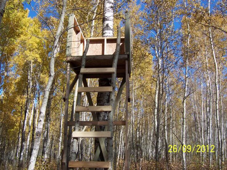 40 Best Shooting House Images On Pinterest Treehouse