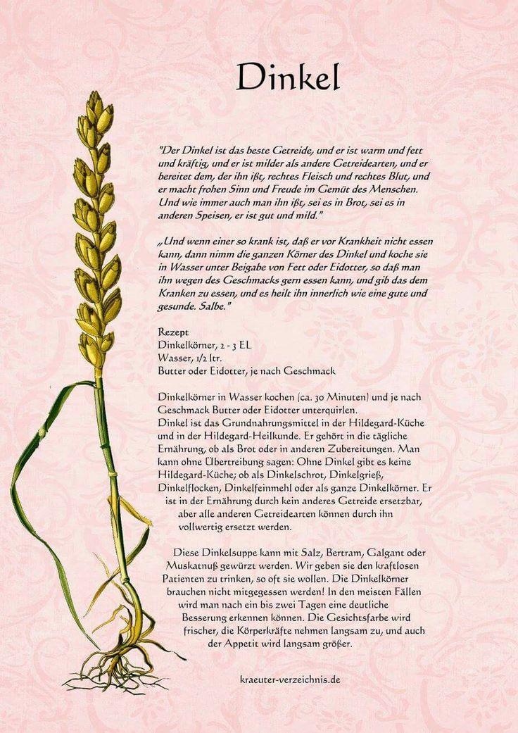 Fabulous Gem se Pflanzen Gesundheit Getreidearten Dinkel Giftpflanzen Naturheilkunde Heilen Apotheke Heilpflanzen