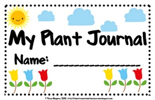 Free Plant Journal to record plant growth.  You can use it to record daily, weekly, or how often that fits your needs