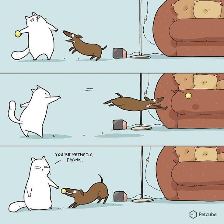 Lingvistov  #art #haha #lol #funnycomics #doodle #doodles #doodlesofinstagram #print #prints #gift #illustration #drawing #comics #lingvistov #sharks #quotes #quoteoftheday #funnyquotes #jokes #jokesfordays #petcube #pets #animals #dogs #dog🐶 #cats