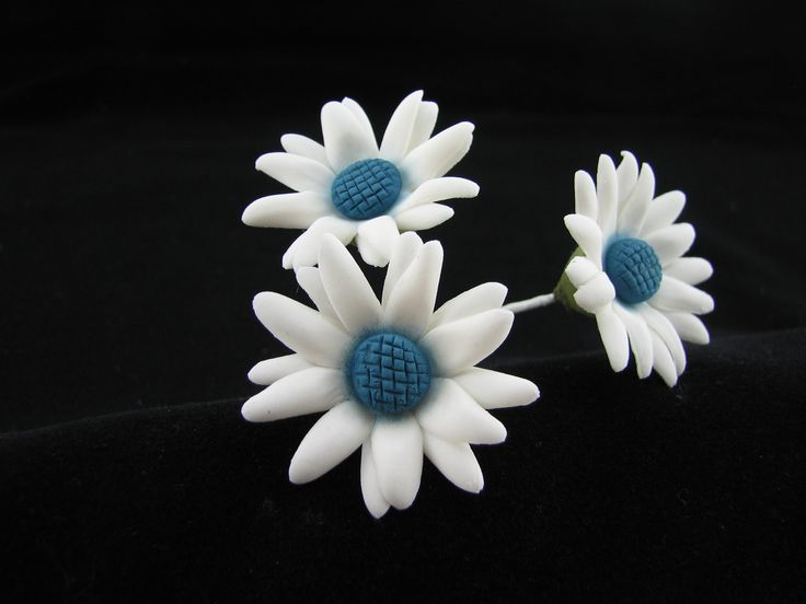 Small daisies with blue centers.