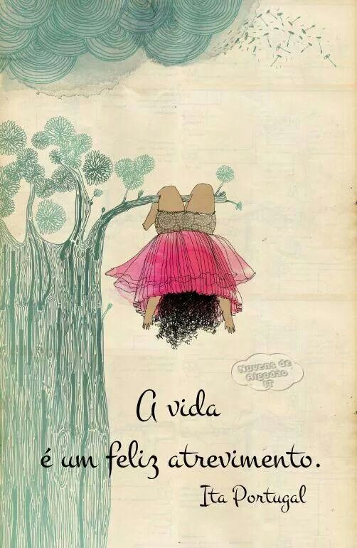 PROSA  -   TRECOS     E     CACARECOS: A VIDA!  reflection