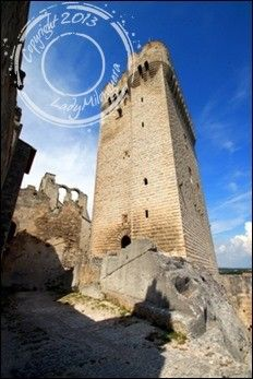 Abbaye-Montmajour-Arles (37)