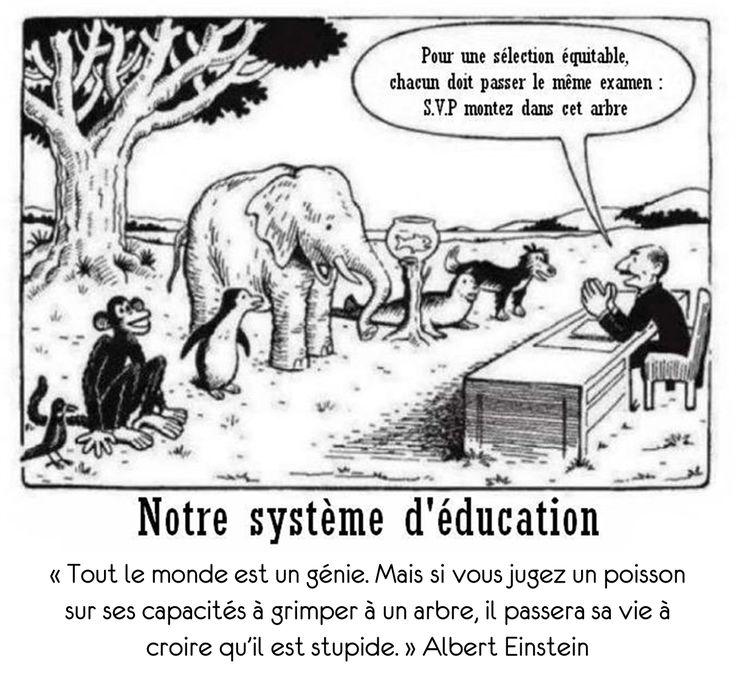 Enseigner autrement selon la théorie des intelligences multiples